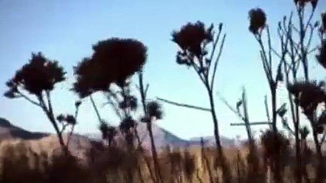 Ancient Aliens Season 12 Episode 9 The Majestic Twelve