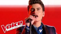 The Cure – Close to Me | David Thibault | The Voice France 2015 | Prime 2