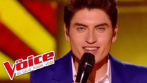 Beyonce – Crazy in Love | David Thibault | The Voice France 2015 | Demi-Finale