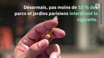 Paris : la cigarette bientôt bannie dans 52 parcs et jardins