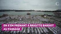 """""""Fuck les fachos"""" : Gilles Lellouche tacle violemment Alain Delon et Brigitte Bardot... avant de supprimer son tweet"""