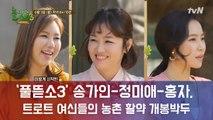 미스트롯 톱3 송가인x정미애x홍자 '풀뜯소3'에 뜬다! 트로트 여신들의 활약 기대 UP!