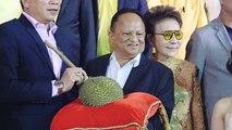 Frucht für knapp 43.000 Euro verkauft: Durian wechselt den Besitzer