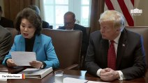 Ocasio-Cortez Slams Trump Admin's 'Corruption' After Elaine Chao NYT Report