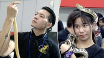 Snakes Compete In Beauty Pageant