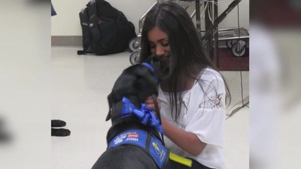 Trained Alert Dogs Give Type 1 Diabetics Freedom