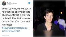 Les Outre-mer dénoncent les propos de Christine Angot sur l'esclavage, le CSA saisi.