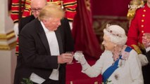 Did President Trump Break Royal Etiquette by Touching the Queen's Back?