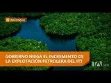 Zona intangible en el Yasuní aumentará en 60 mil hectáreas - Teleamazonas