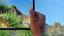 iPad Pro : Une nouvelle façon de créer des videos : Apple