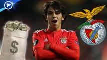 Matthijs de Ligt a cinq propositions, le Benfica a reçu trois offres à 120 M€ pour João Félix