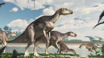 Hallan manada de dinosaurios