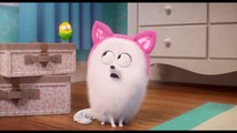 Jenny Slate Learns The Cat Life From Lake Bell In 'The Secret Life of Pets 2'