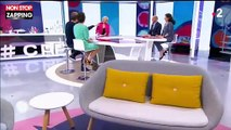 C'est au programme : Sophie Davant ironise sur l'arrêt de l'émission (vidéo)