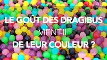 La couleur des Dragibus influence-t-elle leur goût ?