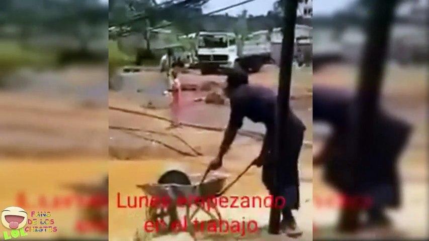 Para Cagarse de RISA  Lo Mas GRACIOSO -  Mayo 2019 - Viral en la web