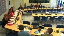 Commission des affaires européennes : Mme Muriel Pénicaud, ministre du Travail - Mercredi 5 juin 2019
