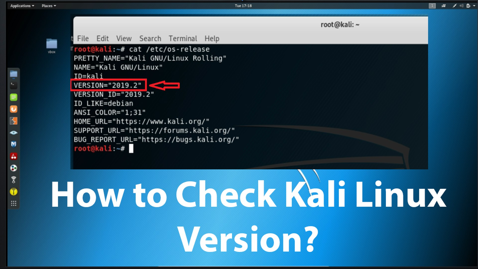 How to Check Kali Linux Version?