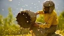 Honeyland Trailer - Documentary