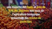 Gare aux pesticides dans les fruits et légumes non bio !