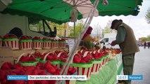 Alimentation : encore trop de pesticides dans les fruits et légumes