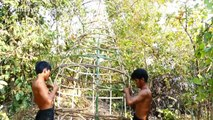 House Animal Nests Flower Grass _ Primitive technology , Building Skill