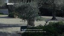 https://videoidf.azureedge.net/bcf4f583-1525-4f22-a439-f56102ddba98