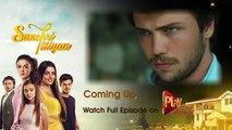 Sunehri Titliyan - New Episode 22 - Turkish Drama - Urdu or Hindi
