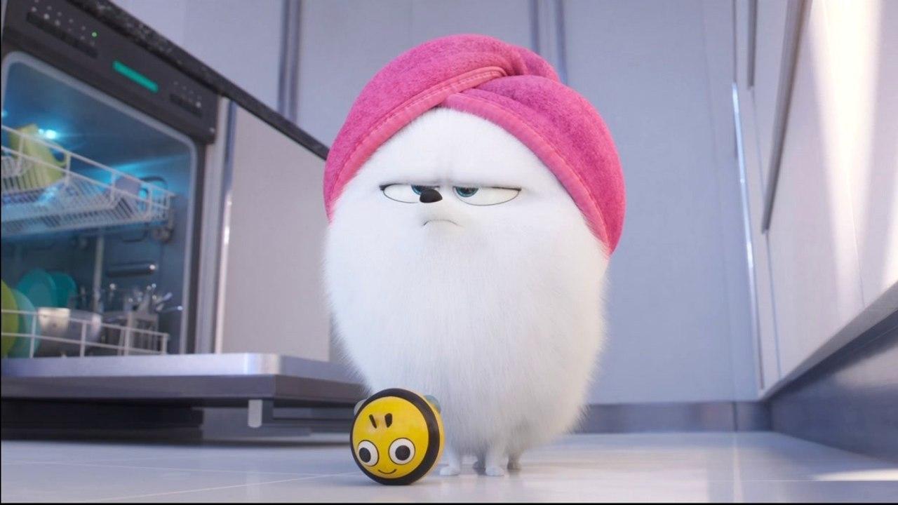 The Secret Life Of Pets 2 Character Pod Jenny Slate Gidget Video Dailymotion