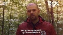 En Bulgarie, trois oursons orphelins retrouvent leur liberté
