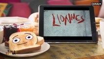 Les idées de sorties de la semaine  : l'expo Drôles Petites Bêtes et le documentaire Lionnes