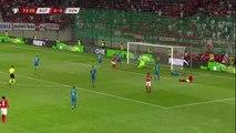 Le but de l'Autriche face à la Slovénie - Foot - Qualif. Euro