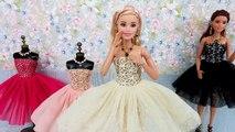 Frozen Elsa Anna Barbie Dress & Doll DressバービードールドレスBoneca R