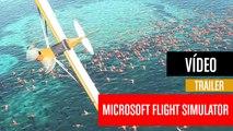 Microsoft Flight Simulator - E3 2019