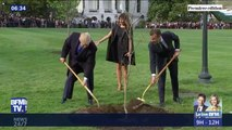 Le chêne planté à la Maison Blanche par Donald Trump et Emmanuel Macron est mort