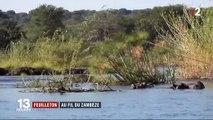 Feuilleton : au fil du Zambèze (1/5)