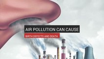 Air Pollution Can Cause Birth Defects And Death