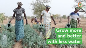 Burkina Faso: Grow more and better with less water