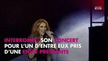 Céline Dion : Son dernier concert à Las Vegas interrompu par un fan