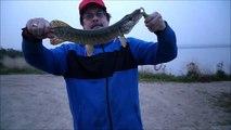 MCH 98 GETTING LAKE FISHING GULL LAKE ALBERTA CANADA.