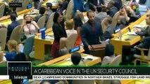 Critical Moves: UN Security Council