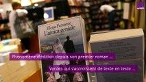 L'Énigme Ferrante : en quête d'auteur