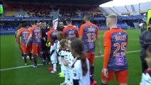 J30 Montpellier Hérault SC - EA Guingamp ( 2-0 ) - Résumé - (MHSC - EAG) 2018-19