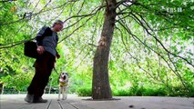 EBS 다큐프라임 - Docuprime_한반도 대서사시 나무 (슈베르트와 나무)_#002