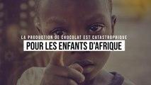 La production de chocolat est catastrophique pour les enfants d'Afrique