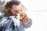 Les conseils pour aider son chien à affronter l'hiver