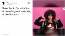 « J'en tremble encore de colère » : la chanteuse de Shaka Ponk victime d'une agression raciste