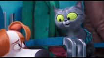 The Secret Life of Pets 2 Movie Clip - Max Meets Pets in the Vet