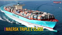 পৃথিবীর সবথেকে বড় ১০ টি জাহাজ ! যা আপনি কল্পনাও করতে পারবেন না  || Top 10 World's Largest Ships
