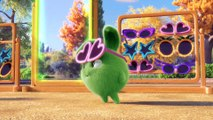 Videos For Kids | Sunny Bunnies - CAPTAIN HOPPER | SUNNY BUNNIES | Funny Videos For Kids